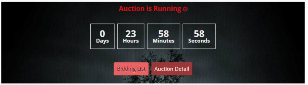 OpenCart auction Module shows product aution on website